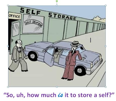 Self Storage cartoon